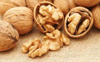 Польза и вред грецкого ореха для организма человека