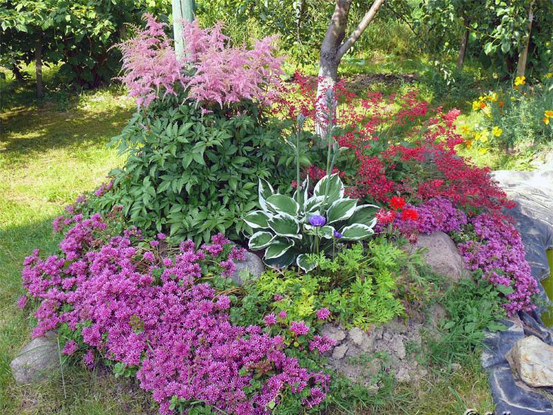Яркая и цветочная альпийская горка для дачи