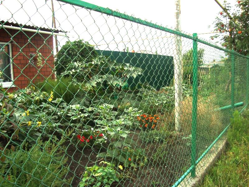Заборы из сетки-рабицы стандартного плетения