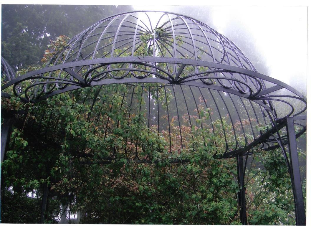 Куполообразный навес для винограда