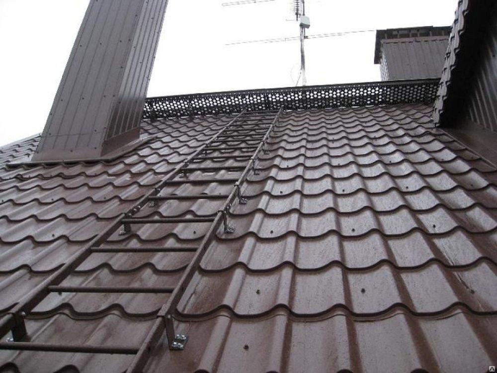 Металлическая лестница для крыши