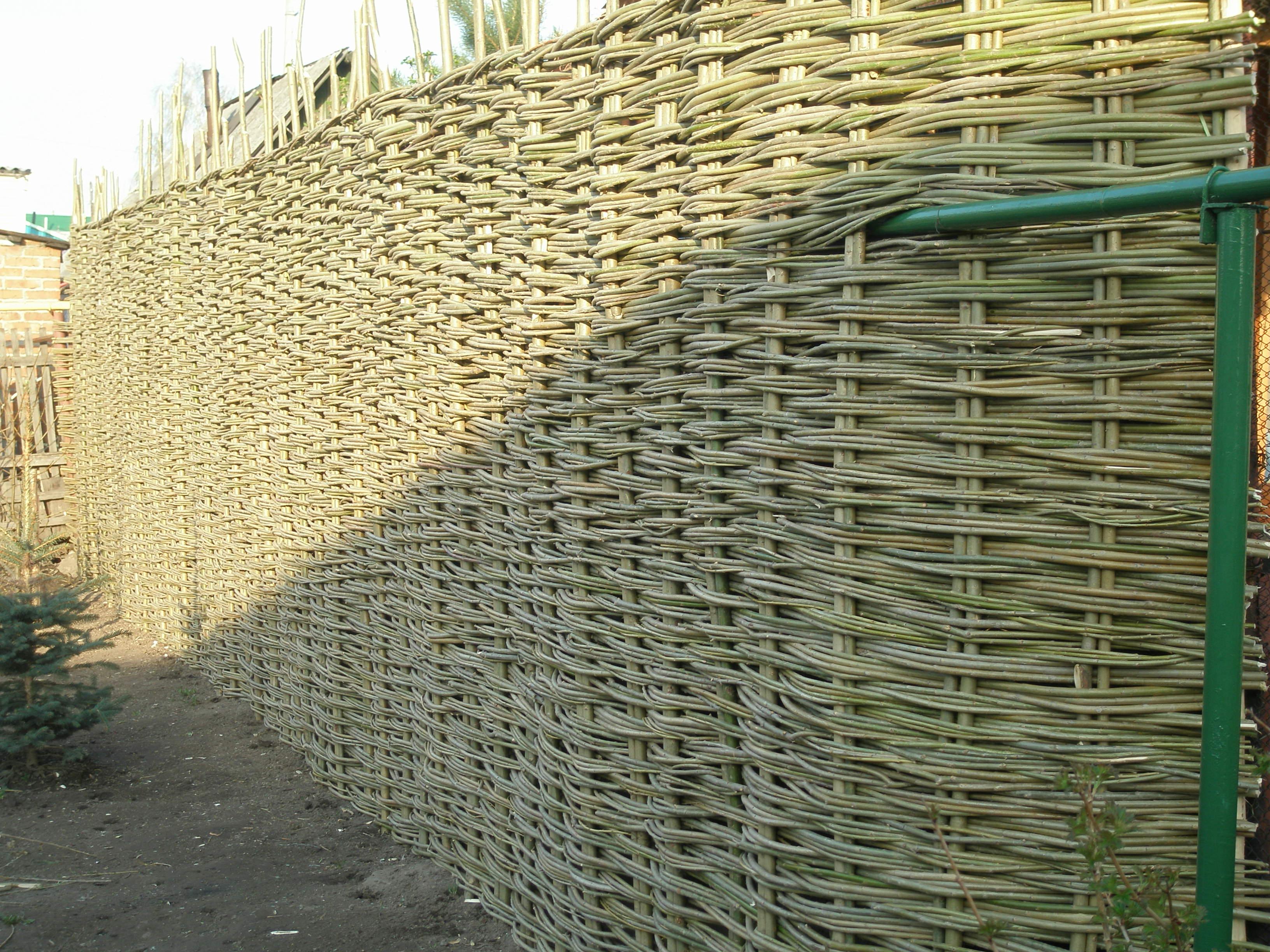 Высокий забор-плетень