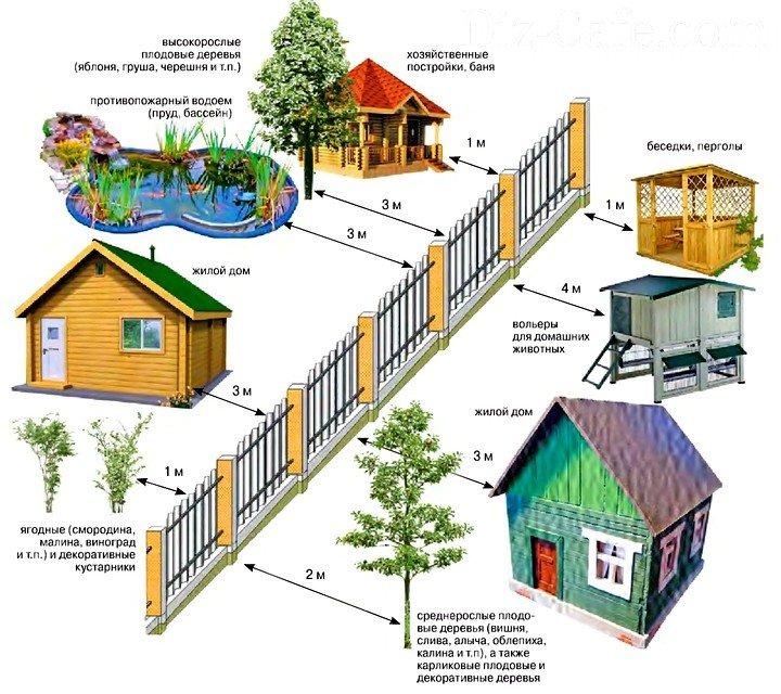 Action форум границы постройки дома от соседей