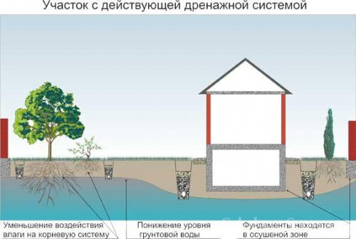 Как понизить уровень грунтовых вод при помощи дренажной системы