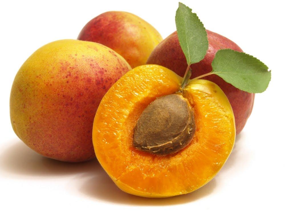 Реально ли вырастить деревце из абрикосовой косточки в домашних условиях