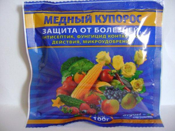 Как самостоятельно избавиться от парши на абрикосе