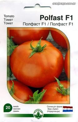 Голландские сорта помидор - низкорослый Полфаст F1