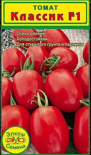 Голландские сорта помидор - томат Классик F1