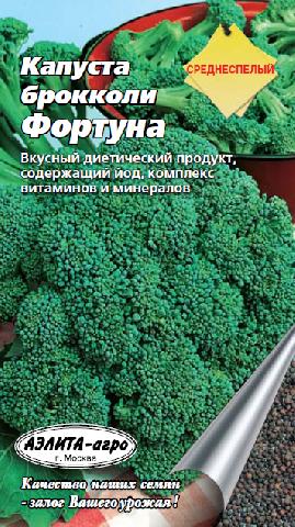 Какой сорт капусты брокколи выбрать для получения здоровой рассады