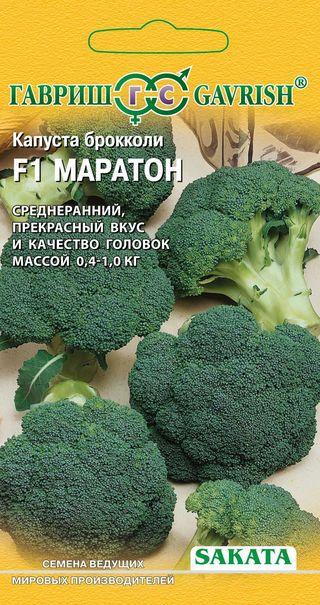 Капуста брокколи лучшие сорта для Сибири - среднеранний Маратон