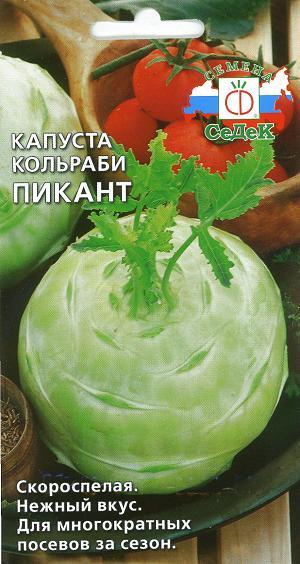 Капуста кольраби сорта Пикант с бело-зеленым плодом