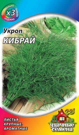 Любимый огородниками сорт укропа Кибрай