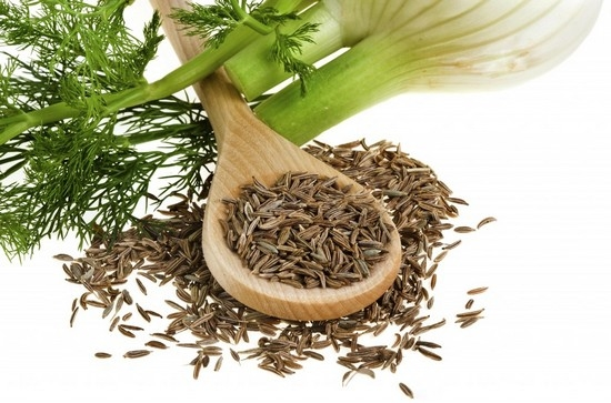 Особенности выращивания фенхеля из семян
