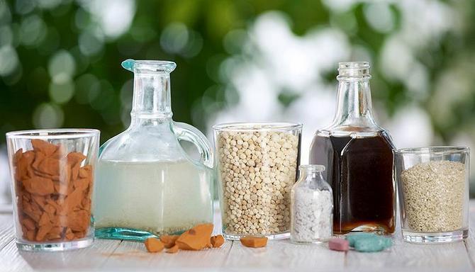 Подкормка рассады перца в домашних условиях - натуральные виды подкормок для перца