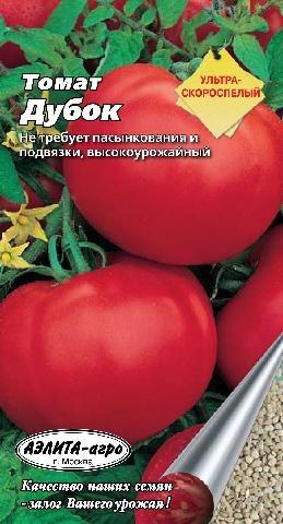 Помидоры дубок - самый устойчивый к фитофторозу сорт