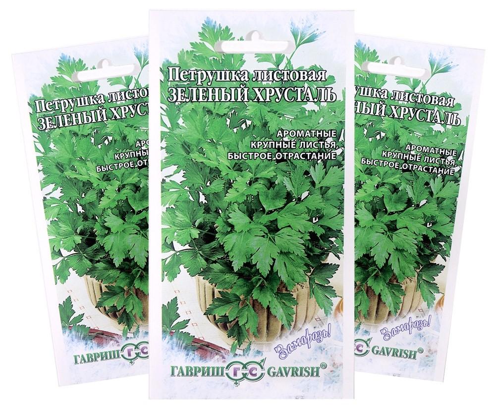 Семена петрушки листовой сорта Зеленый хрусталь