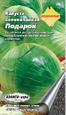 Среднеспелый сорт белокочанной капусты пригодной для квашения Подарок