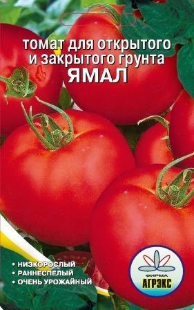 Высокоурожайные помидоры Ямал для открытого грунта ивыращивания в теплице