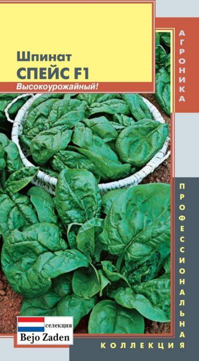 Высокоурожайный шпинат сорта Спейс F1