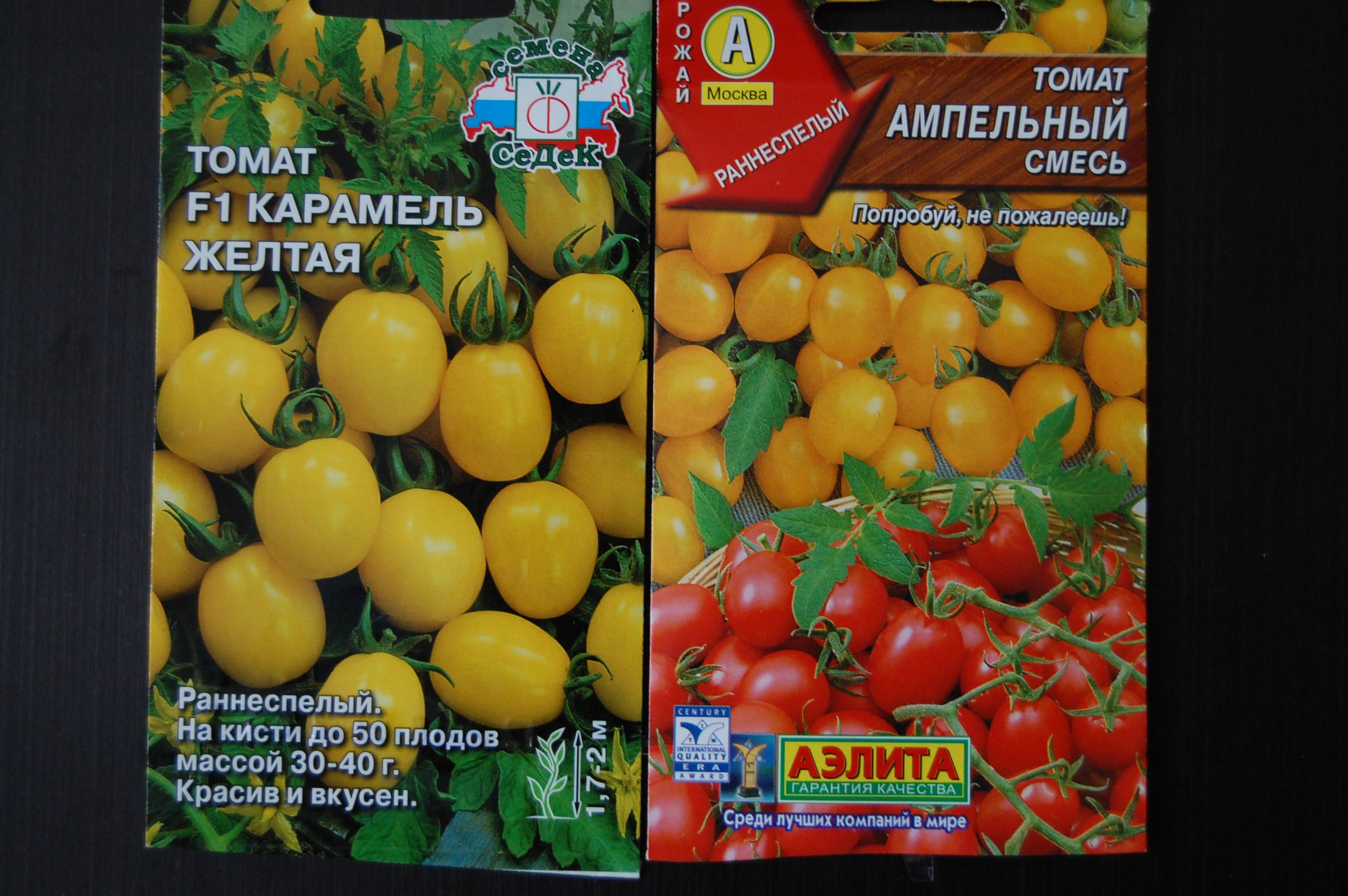 Какой сорт низкорослых помидор черри для открытого грунта выбрать для посадки на даче