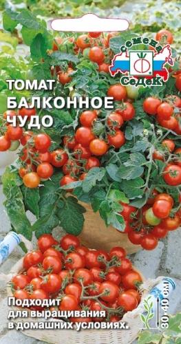 Помидоры черри сорта для открытого грунта низкорослые - томаты Балконное чудо