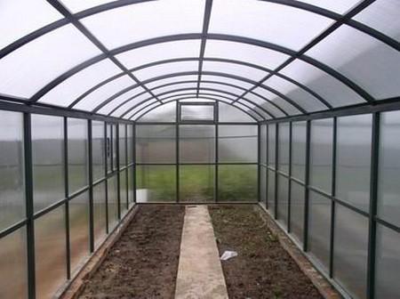 Выращивание перца в теплице из поликарбоната - как правильно организовать теплицу