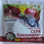Обработка винограда коллоидной серой
