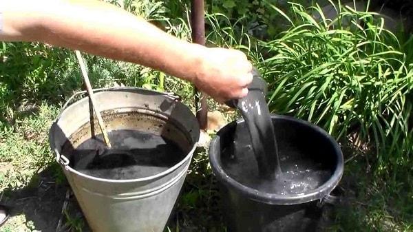 Разведение золы в водном растворе для внекорневой подкормки винограда