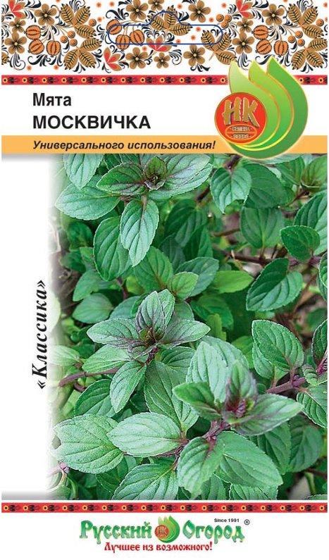 Как вырастить мяту - семена ароматной культуры