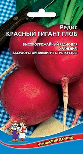 Редис Красный гигант - высокоурожайный, засухоустойчивый сорт позднего срока созревания