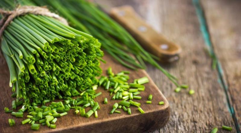 Зеленый лук - химический состав и калорийность