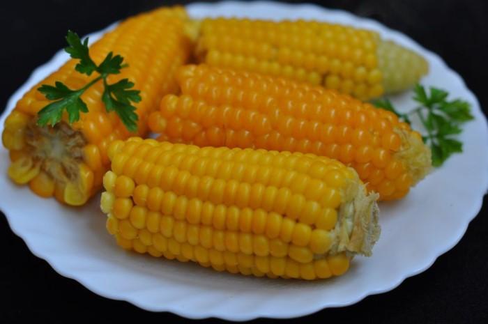 Имеются ли противопоказания к употреблению кукурузы, вред от кукурузных початков