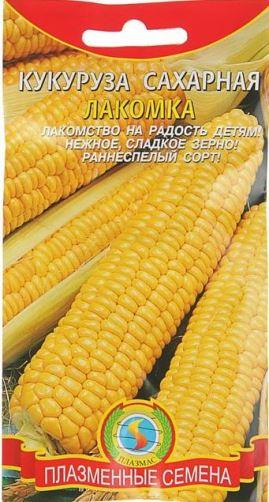 Какой сорт кукурузы выбрать для культивации на дачном участке