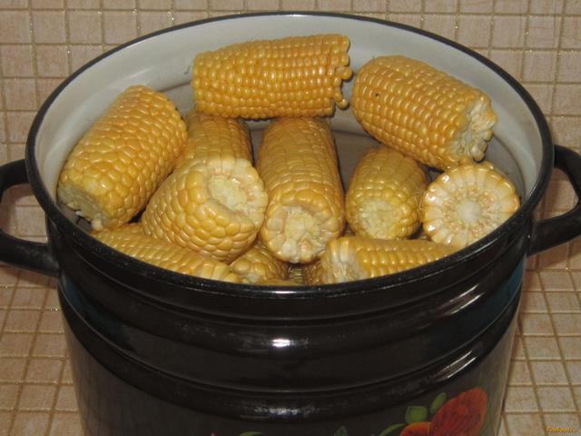 Полезные свойства варёной кукурузы