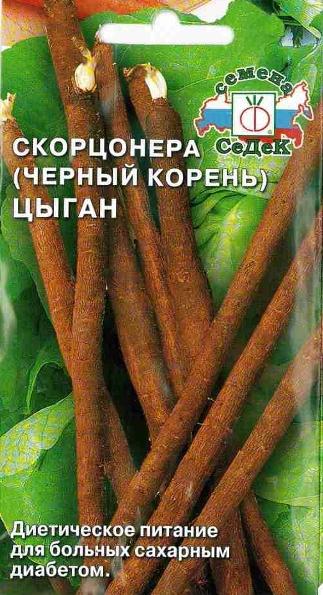 Скорцонера Циган - почему стоит вырастить данный сорт черной моркови