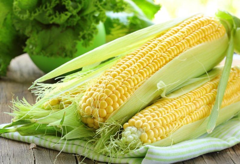 Содержание полезных веществ в кукурузе