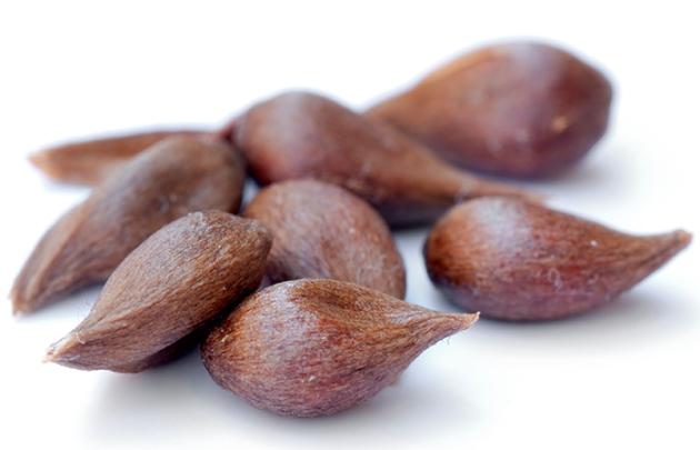 3 шага по подготовке семян яблока перед посадкой - промывание, замачивание, стратификация