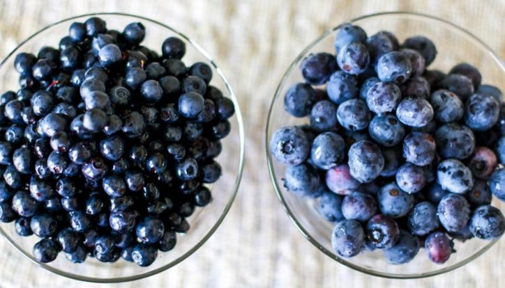 Голубика и черника в чем разница фото