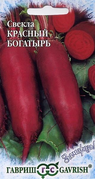 Красный богатырь - лучший темный сорт красной свеклы