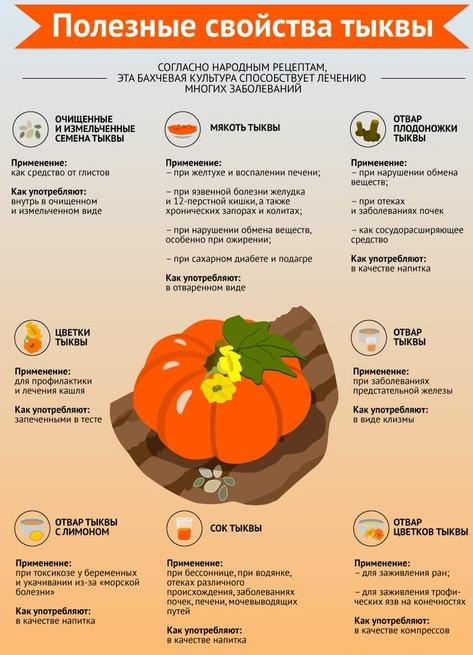 Полезные и лечебные свойства тыквы для здоровья человека