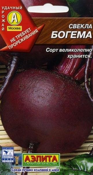 Свекла Богема - сорт без колец на мякоти