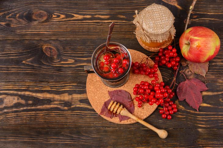 Целебные свойства плодов калины