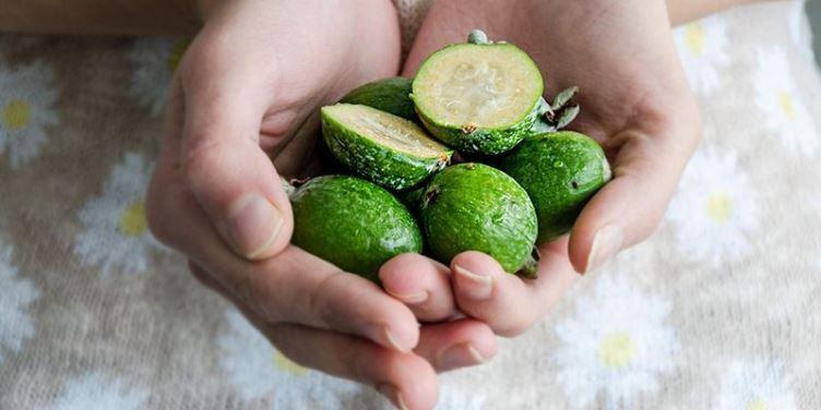 Употребление фрукта фейхоа при беременности - за и против