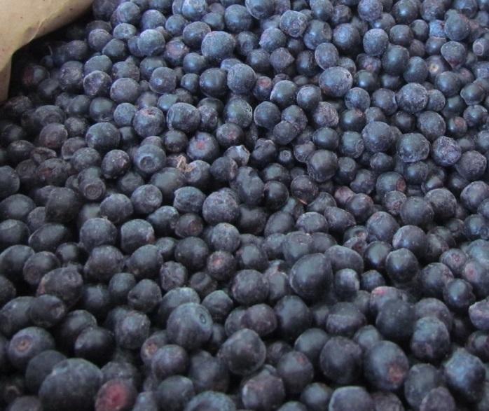 Ягоды черники - полезные микроэлементы, витамины