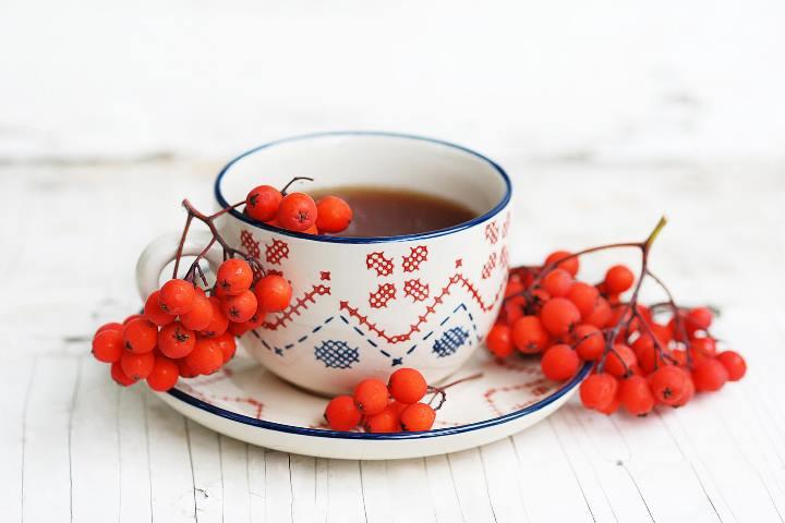 Лечение красной рябиной - рецепты народной медицины