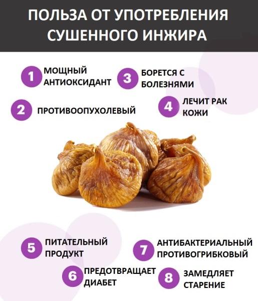 Полезные свойства сушенного инжира
