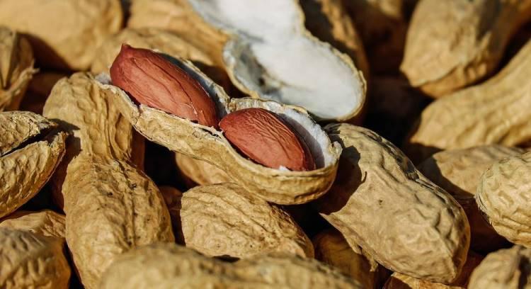 Как выбрать семена арахиса для посадки
