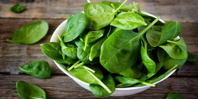 Полезные свойства шпината для мужского и женского организма