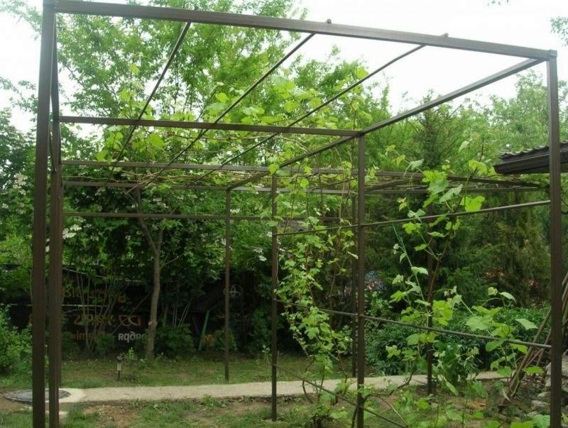 Шпалера для винограда своими руками, изготовление по фото 26